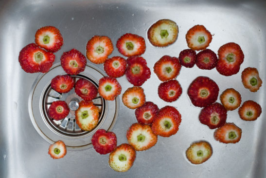 printed photograph of the remains of strawberries prepared to be eaten in a steel sink